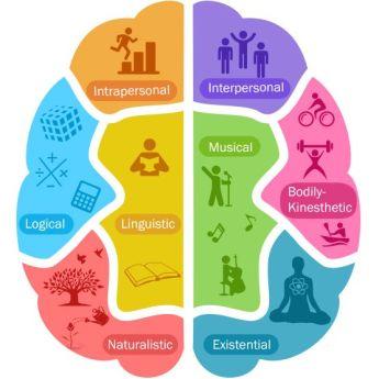 brain multiple Intelligence